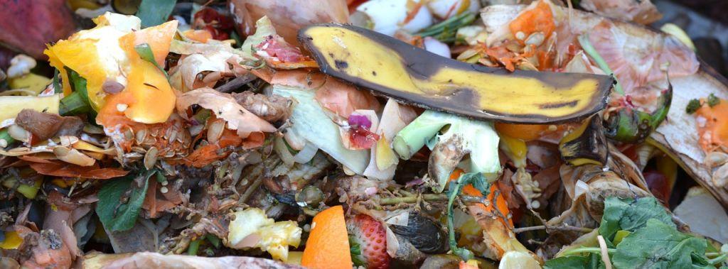 compost déchet