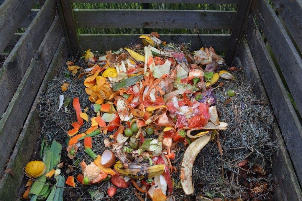 engrais verts compost